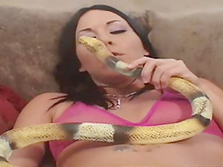 Horny brunette can take a couple of toys and deal with your cock well
